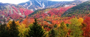 Whiteface_in_Fall_1